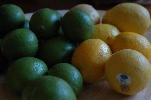 lemons-and-limes1