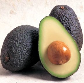 Avocado_Photo